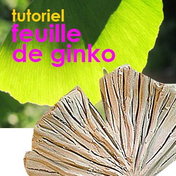 Le Ginko biloba l'arbre indestructible, [tutoriel] modelage