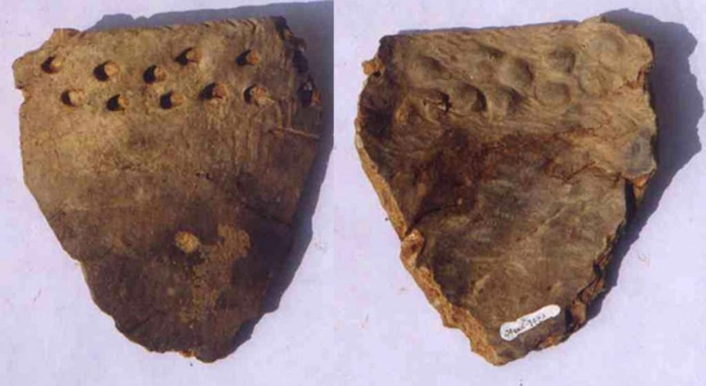 Ce fragment de terre cuite, vieux d'environ 12.500 ans, provient également de la grotte de Xianrendong en Chine, site de la découverte de la plus ancienne poterie au monde. © AAAS